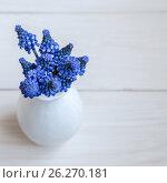 Bouquet of hyacinths. Стоковое фото, фотограф Ирина Толокновская / Фотобанк Лори