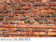 Купить «Брестская крепость. Фрагмент стены», фото № 26306853, снято 21 апреля 2017 г. (c) Дмитрий Грушин / Фотобанк Лори