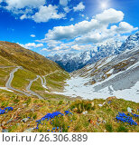 Купить «Summer Stelvio Pass (Italy) and blue flowers in front.», фото № 26306889, снято 2 июня 2012 г. (c) Юрий Брыкайло / Фотобанк Лори