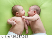 Купить «Two baby boys twin brothers», фото № 26317585, снято 26 сентября 2012 г. (c) Оксана Кузьмина / Фотобанк Лори