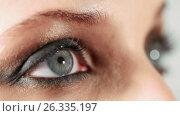 Купить «Woman eye with evening makeup», видеоролик № 26335197, снято 9 декабря 2016 г. (c) Serg Zastavkin / Фотобанк Лори
