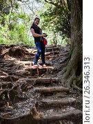 Купить «Женщина на прогулке в лесу спускается по ступенькам из корней деревьев. Парк в городе Камакура, Япония», фото № 26346313, снято 15 апреля 2013 г. (c) Кекяляйнен Андрей / Фотобанк Лори