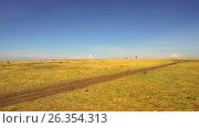 Купить «maasai mara national reserve savanna at africa», видеоролик № 26354313, снято 16 апреля 2017 г. (c) Syda Productions / Фотобанк Лори
