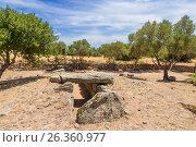 Купить «Остров Сардиния, Италия. Арзакена: Гробница гиганта Moru, поздний бронзовый век, около 1300 г. до н.э.», фото № 26360977, снято 4 июля 2016 г. (c) Rokhin Valery / Фотобанк Лори