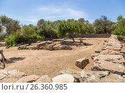Купить «Остров Сардиния, Италия. Арзакена: Гробница гиганта Moru, около 1300 г. до н.э.», фото № 26360985, снято 4 июля 2016 г. (c) Rokhin Valery / Фотобанк Лори