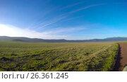 Купить «Антилопы Эланд в кратере Нгоронгоро.  Танзания. Африка», видеоролик № 26361245, снято 15 февраля 2017 г. (c) Сергей Петренко / Фотобанк Лори