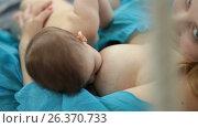 Little baby girl breast feeding. Стоковое видео, видеограф Швец Анастасия / Фотобанк Лори