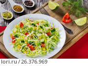 Купить «Spring cabbage salad with bell pepper, corn and dill, close-up», фото № 26376969, снято 15 июня 2019 г. (c) Oksana Zh / Фотобанк Лори