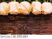 Свежие кремовые розы на деревянном фоне. Стоковое фото, фотограф Елена Руй / Фотобанк Лори