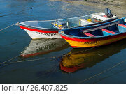 Купить «Two small fishing boats in the harbor of the city of Ancud on Chiloe Island, Chile.», фото № 26407825, снято 1 декабря 2016 г. (c) age Fotostock / Фотобанк Лори