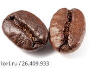 Купить «Два кофейных зерна крупным планом», фото № 26409933, снято 29 марта 2009 г. (c) Александр Гаценко / Фотобанк Лори