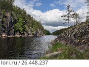 Купить «Природа Карелии», фото № 26448237, снято 17 июня 2015 г. (c) олег данильченко / Фотобанк Лори