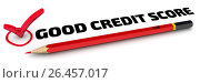 Купить «Good credit score. The check mark», иллюстрация № 26457017 (c) WalDeMarus / Фотобанк Лори