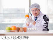 Купить «Nutrition expert testing food products in lab», фото № 26457969, снято 14 марта 2017 г. (c) Elnur / Фотобанк Лори