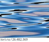 Купить «Reflection», фото № 26482369, снято 2 июня 2017 г. (c) Сергей Паникратов / Фотобанк Лори
