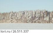 Купить «Winter theme. Field and forest in the snow in sunny weather and great frost.», видеоролик № 26511337, снято 9 мая 2017 г. (c) Mikhail Davidovich / Фотобанк Лори
