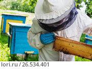 beekeeper with bees outdoor. Стоковое фото, фотограф Майя Крученкова / Фотобанк Лори