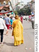 Купить «Vietnam, H? Chí Minh, Ho Chi Minh City, In the Chinese Quarter on the Vietnamese New Year's Day the Tet», фото № 26563529, снято 20 января 2020 г. (c) age Fotostock / Фотобанк Лори