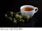 Купить «Белая чашка чая с веткой фоне с отражением», фото № 26572481, снято 20 июня 2019 г. (c) Скляров Роман / Фотобанк Лори