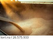 Купить «Погрузка зерна в трюм», фото № 26575933, снято 31 мая 2017 г. (c) Игорь Струков / Фотобанк Лори
