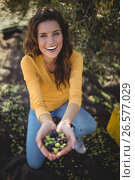 Smiling woman showing olives while crouching on field at farm. Стоковое фото, агентство Wavebreak Media / Фотобанк Лори