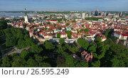Купить «Старый город в Таллине, Эстония. Вид сверху», видеоролик № 26595249, снято 28 июня 2017 г. (c) Кекяляйнен Андрей / Фотобанк Лори