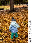 Child. Стоковое фото, фотограф Антон Соваренко / Фотобанк Лори