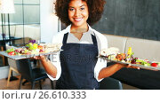 Купить «Portrait of smiling waitress holding food tray», видеоролик № 26610333, снято 6 декабря 2019 г. (c) Wavebreak Media / Фотобанк Лори