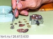 Купить «Watch repairer working with watch pieces», фото № 26613633, снято 9 июня 2017 г. (c) age Fotostock / Фотобанк Лори