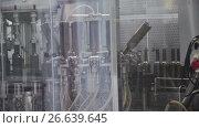 Купить «Industrial line for bottling wine», видеоролик № 26639645, снято 18 июня 2017 г. (c) Илья Насакин / Фотобанк Лори