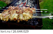 Купить «meat on skewers and firewood in brazier outdoors», видеоролик № 26644029, снято 24 июня 2017 г. (c) Syda Productions / Фотобанк Лори