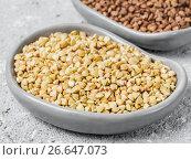 Купить «Raw green buckwheat on gray background», фото № 26647073, снято 13 апреля 2017 г. (c) Ольга Сергеева / Фотобанк Лори