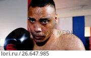 Купить «Male boxer practicing boxing in fitness studio», видеоролик № 26647985, снято 29 мая 2020 г. (c) Wavebreak Media / Фотобанк Лори