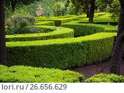 Купить «French formal garden», фото № 26656629, снято 13 мая 2016 г. (c) Яков Филимонов / Фотобанк Лори