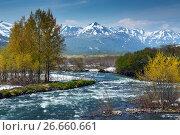 Купить «Горная камчатская река», фото № 26660661, снято 18 июня 2017 г. (c) А. А. Пирагис / Фотобанк Лори