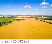 Купить «Aerial view of cereals in central Russia», фото № 26682933, снято 18 июля 2017 г. (c) Володина Ольга / Фотобанк Лори