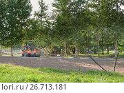 Купить «Братиславский парк, микрорайон Марьино ЮВАО Москвы. Проводится комплексное благоустройство парка. Рабочие обустраивают дорожки парка», фото № 26713181, снято 27 июля 2017 г. (c) Наталья Николаева / Фотобанк Лори