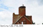 Купить «Аист на руинах кирхи», фото № 26716305, снято 23 июня 2017 г. (c) Ed_Z / Фотобанк Лори