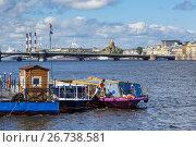 Купить «Вид на причал для пассажирских судов. Санкт-Петербург, Россия.», фото № 26738581, снято 2 июля 2017 г. (c) Bala-Kate / Фотобанк Лори