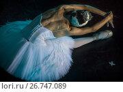"""Балерина в роли Одетты из балета """"Лебединое озеро"""" выступает на сцене театра в городе Москве, Россия. Стоковое фото, фотограф Николай Винокуров / Фотобанк Лори"""