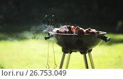 Купить «barbecue meat on grill or brazier outdoors», видеоролик № 26753049, снято 16 июля 2019 г. (c) Syda Productions / Фотобанк Лори
