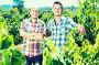 Two gardeners standing together in grapes tree yard, фото № 26772149, снято 21 августа 2017 г. (c) Яков Филимонов / Фотобанк Лори