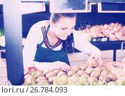Купить «Woman seller placing kiwis», фото № 26784093, снято 23 ноября 2016 г. (c) Яков Филимонов / Фотобанк Лори
