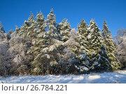 Купить «Зимний пейзаж с лесом в солнечную погоду», фото № 26784221, снято 15 ноября 2016 г. (c) Елена Коромыслова / Фотобанк Лори