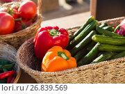Купить «Various fresh vegetables in wicker basket», фото № 26839569, снято 31 января 2017 г. (c) Wavebreak Media / Фотобанк Лори