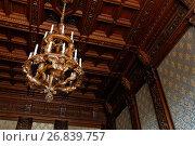 Дубовая люстра в Юсуповском дворце на Мойке, Санкт-Петербург после реставрации, фото № 26839757, снято 30 августа 2017 г. (c) Stockphoto / Фотобанк Лори
