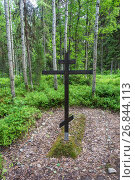 Купить «The place of mass burials of those repressed in the 1920 – 1930s on the Sekirnaya mountain on Solovki», фото № 26844113, снято 26 июля 2017 г. (c) Валерий Смирнов / Фотобанк Лори