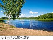 Купить «Летний пейзаж с березой на берегу реки Волги», фото № 26867289, снято 11 июля 2017 г. (c) Татьяна Белова / Фотобанк Лори