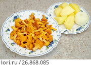 Купить «Лисички, картошка и лук, приготовленные для жарки», эксклюзивное фото № 26868085, снято 16 июля 2017 г. (c) Dmitry29 / Фотобанк Лори