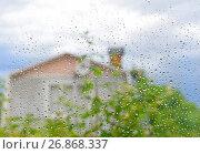 Купить «Капли дождя на стекле», эксклюзивное фото № 26868337, снято 30 июня 2017 г. (c) Юрий Морозов / Фотобанк Лори